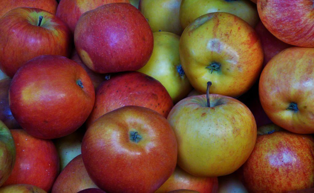 Hollin lane allotments apple harvest