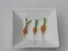 05-Winning-Carrots