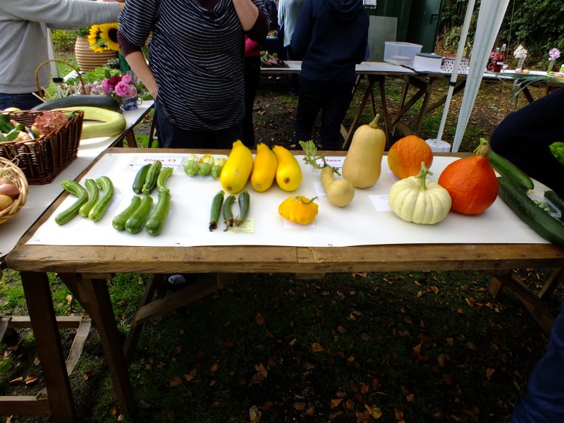 2018-09-09 Allotment Show [014]
