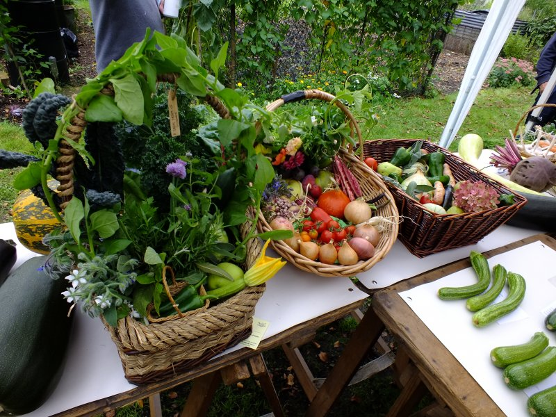 2018-09-09 Allotment Show [026]